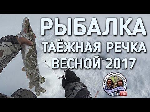 братья приходько новые видео рыбалка