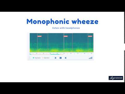 Lung sounds - monophonic wheeze