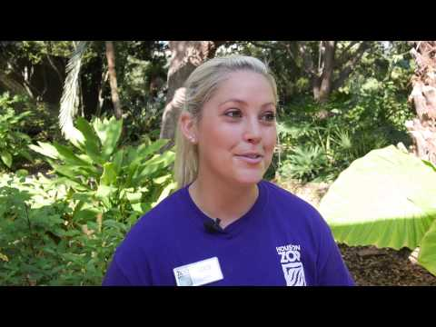 Lucy Talks About the Houston Zoo Internship Program