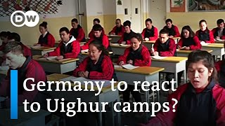 Will Germany stand up to China's Uighur detention camps? | DW News