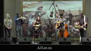 AJ Lee - Look at Miss Ohio written by Gillian Welch and David Rawlings