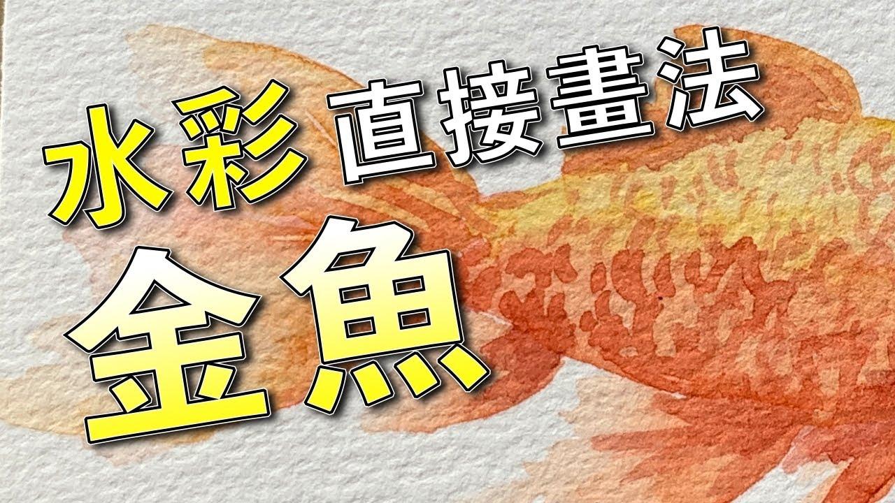 水彩直接畫法金魚【屯門畫室】