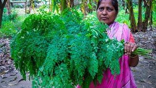 Vegetable Recipe: Sojina Sak (Drumstick Spinach) Fried by Village Food Life