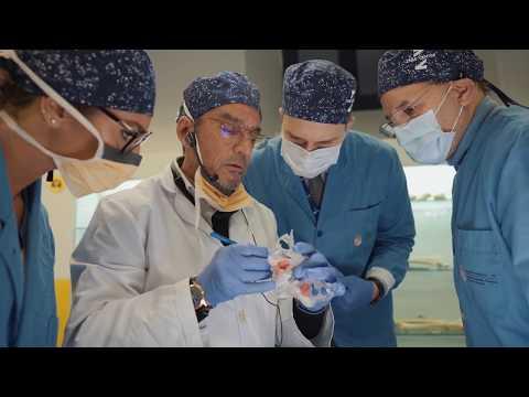 ZAGA Course by Dr Carlos Aparicio