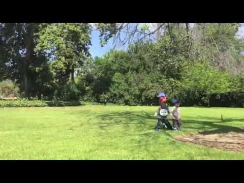 Los Angeles County Arboretum and Botanic Garden (bonus footage)