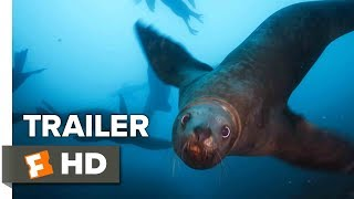 Blue Planet II Trailer #2 - BBC (2017) | Movieclips Trailers