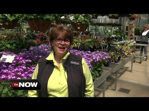 Gardeners can rent space at Lockwood's Garden Center in Hamburg