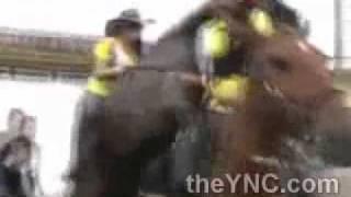 الحصان هاج على البنت 18+