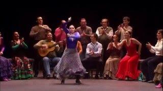 Spanish dance. Испанские танцы.(Испанские танецы из спектакля