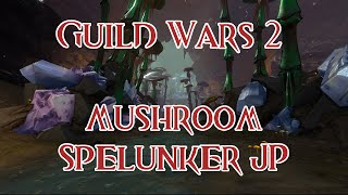 Master Mushroom Spelunker Jumping Puzzle - Guild Wars 2: Heart of Thorns