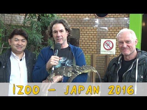 Reptil TV - Folge 89 - Besuch im iZoo - Japan 2016