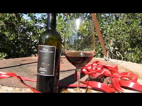 Rosso Passione (Wine not) - A corto di vino - Orcia Wine Festival 2017