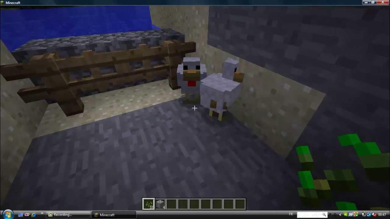 Minecraft comment reproduire des poules youtube - Poule minecraft ...
