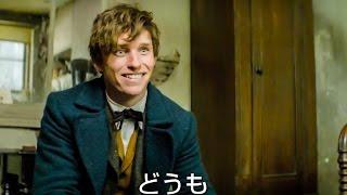『ハリー・ポッター』シリーズの原作者J・K・ローリングが映画の脚本に...