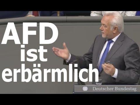 FDP :
