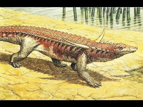 Desmatosuchus | Animal Database | FANDOM powered by Wikia
