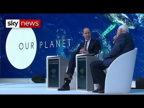 Prince William and Sir David Attenborough warn that humans 'need to be careful'