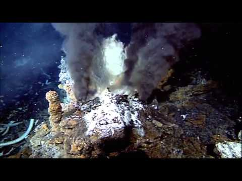 Mariana Trench Deepest part of the oceans explored  HD