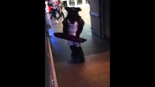 Utah Jazz Bear Sliding down the stairs (Utah vs JIMMER)