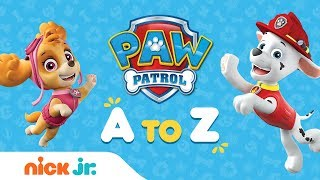 PAW Patrol from A to Z 📚Learn to Read the Alphabet w/ the Pups | Nick Jr.