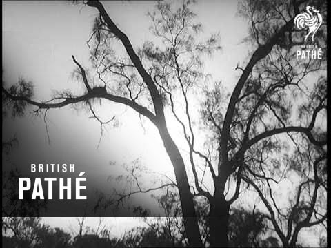 """""""School Of The Air"""" Lessons Broadcast To Outback (1962)"""