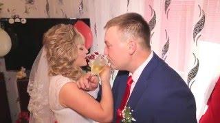 Свадебный КЛИП Виктория и Андрей 2 октября 2015 г. ( видеограф Александр т. 8-923-285-00-69 )