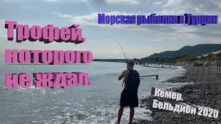 Морская рыбалка TUR Кемер Бельдиби 2020 Трофей которого не ждал Тревел спиннинг для Рокфишинга