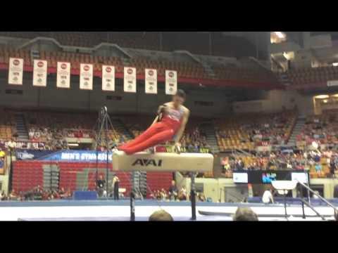 Ohio State Men's Gymnastics | Post NCAAs Promo Video