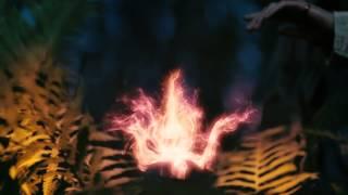 Пока цветёт Папоротник / Magic effects / Trigraph studio