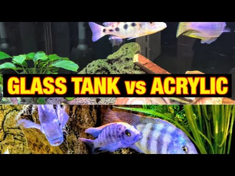 GLASS Vs ACRYLIC TANK - Which Is Best?