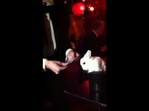 Magic Rabbit at Mon Jin Lau