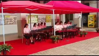 張沛松紀念中學—古箏表演