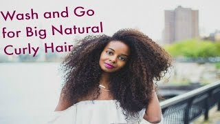 *Highly Requested* Big Natural Curly Hair Wash and Go