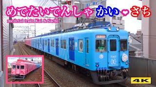 南海 めでたいでんしゃ『かい❤︎さち』新婚旅行列車 !!! 2019.1.26【4K】