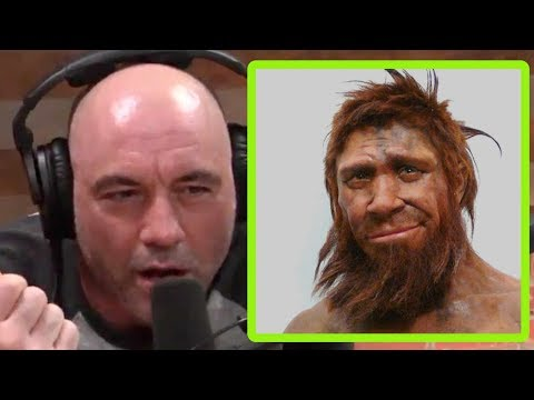 Are Our Ancestors' Memories Locked In Our DNA? | Joe Rogan And Michael Yo