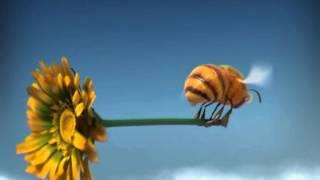Csodabogarak - Darazsak (1.évad 4.rész)