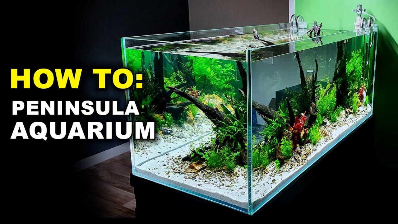 Asian Themed Fish Tank Decorations  from i.ytimg.com