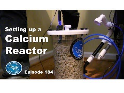 How to set up a Calcium Reactor
