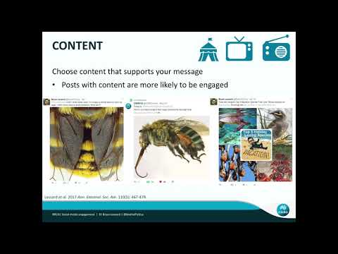 Tips on promoting entomology and natural history museums on social media