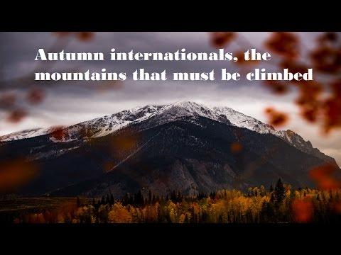 Autumn Internationals Week 2 Review