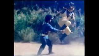 Shaolin against Lama fight pt 4