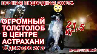 Огромный толстолоб на 21кг Ночная подводная охота в центре Астрахани Сколько мусора на дне Кутума