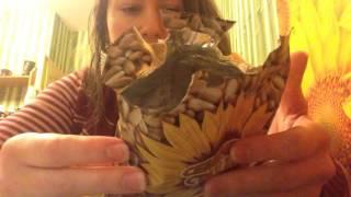 Семечки Семечек стакан очищенные нежаренные ☕ вкусный обзор еды