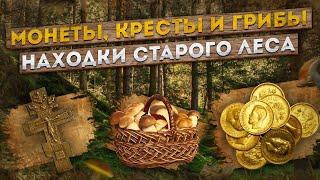Монеты кресты и грибы. Находки старого леса.