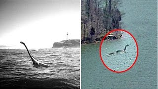 5 Unexplained Sea Monsters That May Exist