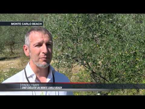 Monte Carlo Beach : Le restaurant gastronomique Elsa certifié Bio