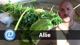 Åbningsdag på Allie Bar & Restaurant på Amager