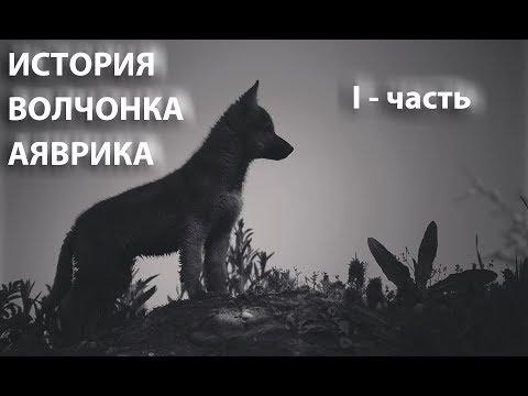 История волка Аяврика часть I