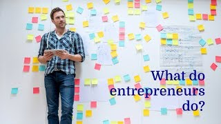 What do entrepreneurs do?