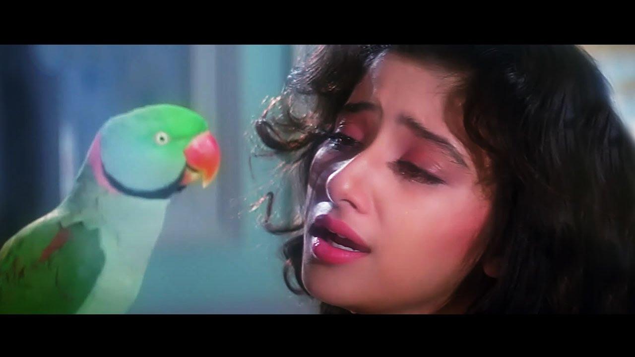 प्यार में बिछड़े प्रेमियों के लिए 5 बेहतरीन Bollywood गाने_ हिंदी दर्द भरे गाने_ Bollywood Sad Songs